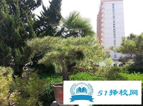 安徽省淮南技工学校招生对象、招生要求